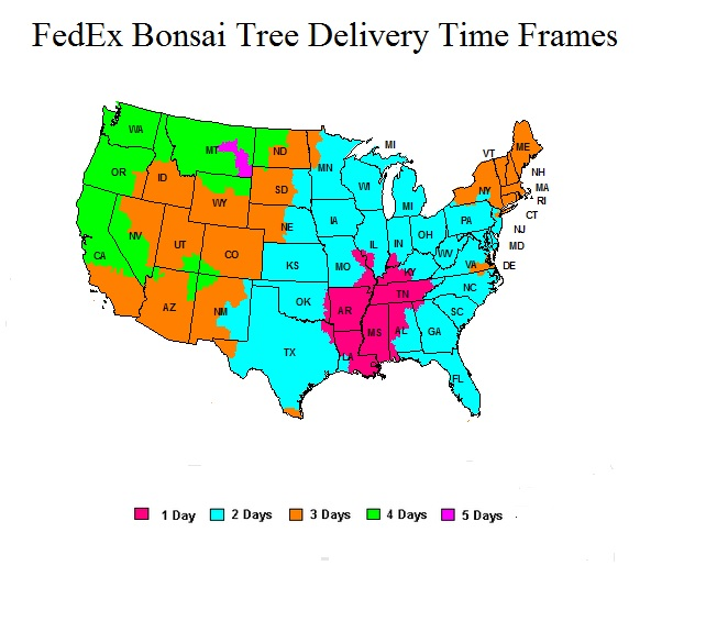 updated-fedex-tree-delivery-3-.jpg